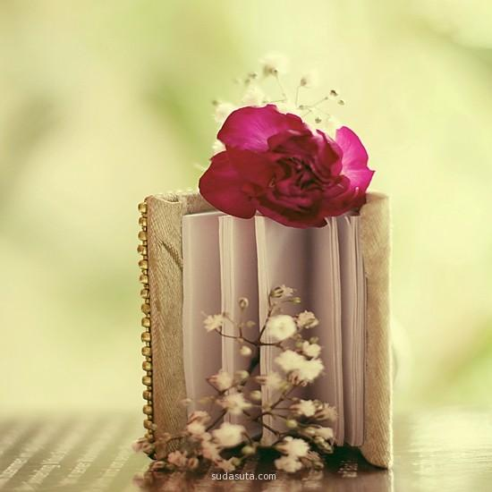 A book with a rose on top.