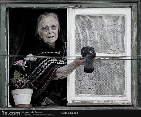 老妇女喂鸽子