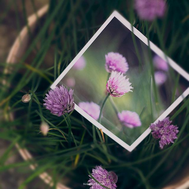 Gabriela Tulian 自然摄影欣赏