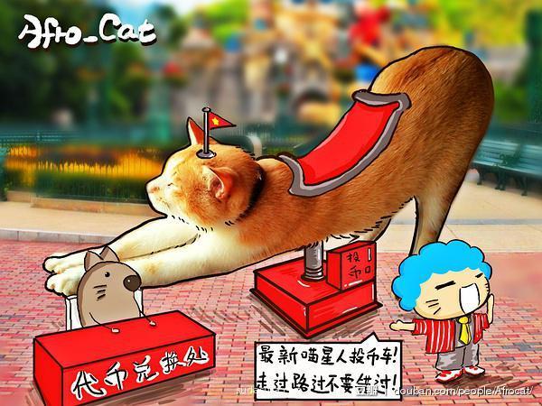 Afro Cat 小包子涂鸦日记