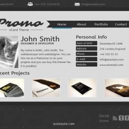 虚拟名片网站设计欣赏