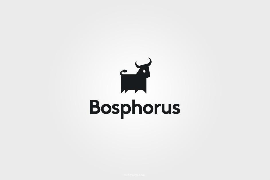 Bosphorus 视觉传达欣赏