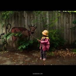 Julien Coquentin 墙上艺术