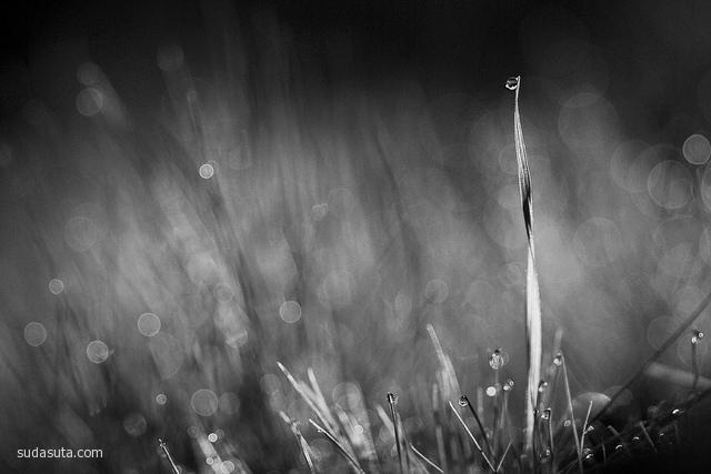 Cathy McCrery-Cordle 黑白摄影欣赏