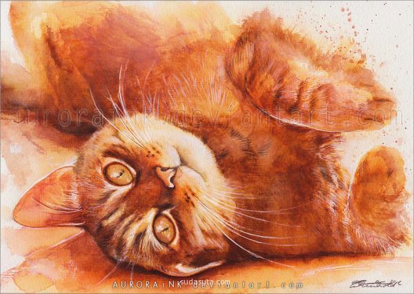 Aurora Wienhold 可爱水彩猫咪