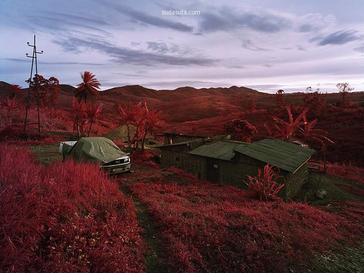 Richard Mosse 粉红色