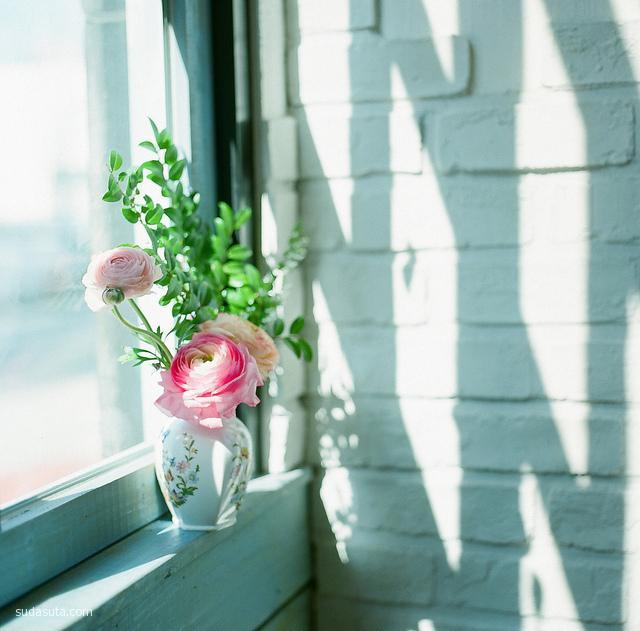 Junghyun Choi 唯美的生活摄影欣赏