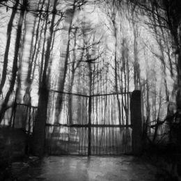 Rosario Leotta 黑白摄影欣赏