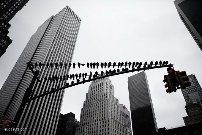 Marko Savic 旅行日记 纽约纽约