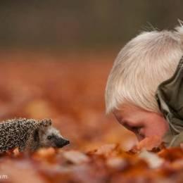 Edwin Kats 宠物摄影欣赏