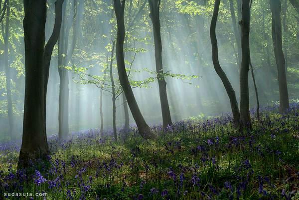 Peter Spencer 唯美浪漫的自然摄影 - 苏打苏塔设计量贩铺 – sudasuta.com – 每日分享创意灵感!