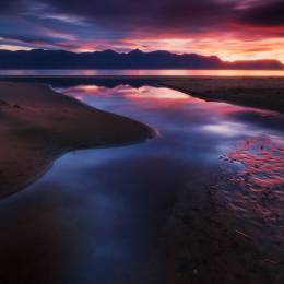 Dylan Toh 自然摄影欣赏