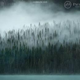 Paul Zizka 自然摄影欣赏