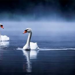 Alex Saberi 唯美自然摄影欣赏