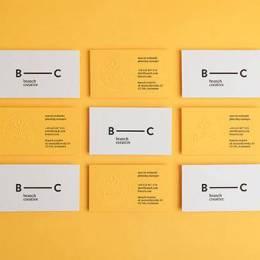 Branch Creative 品牌设计欣赏