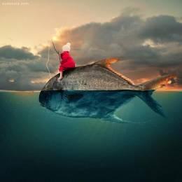 Caras Ionut 创意儿童照片合成作品欣赏