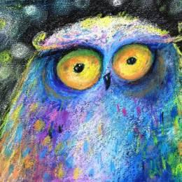 Katja 可爱手绘猫头鹰