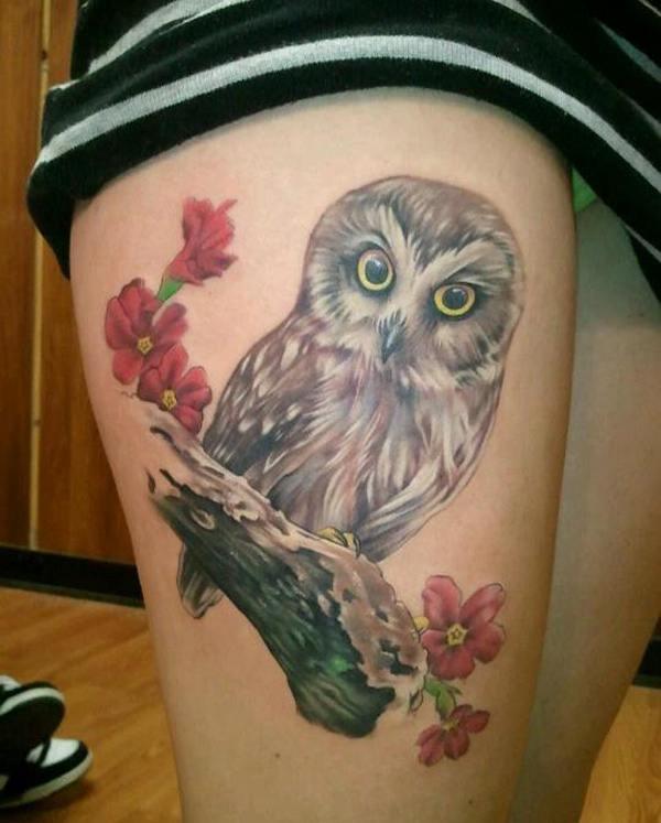 Owl (10)
