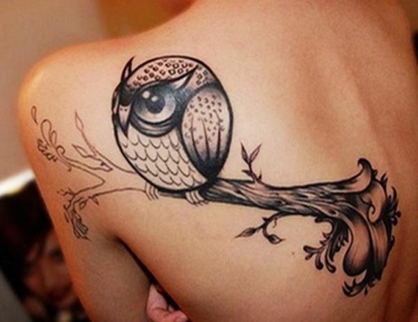 Owl (11)