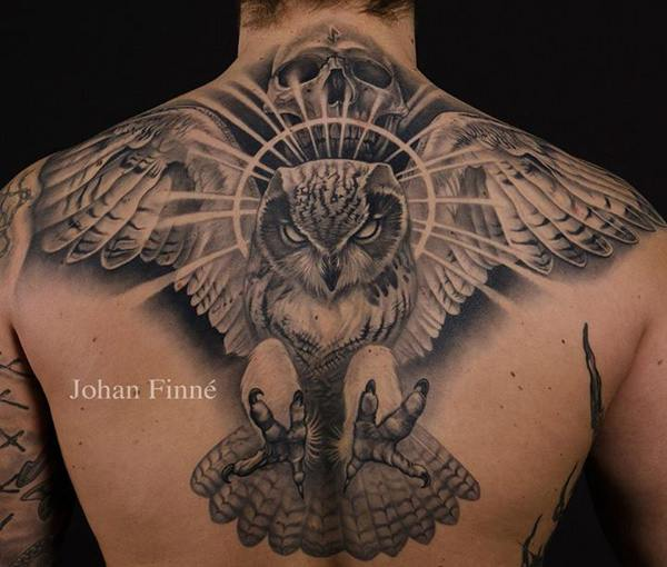 Owl (13)