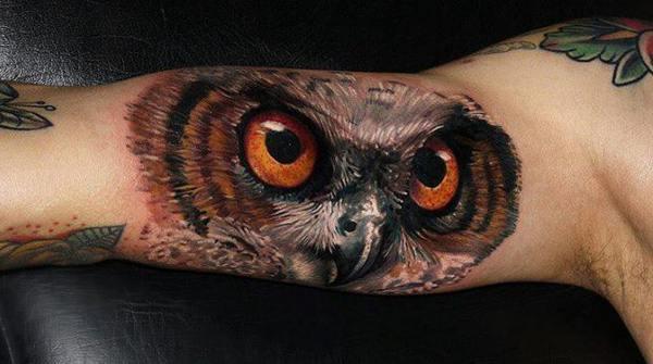 Owl (16)
