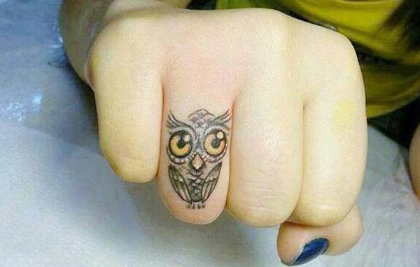 Owl (20)