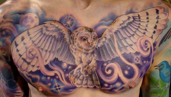 Owl (8)