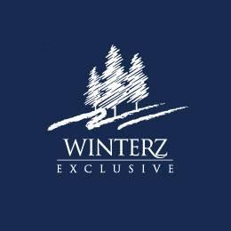 创意LOGO设计分享 寒冷冬季