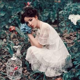 月芝猫 林中仙女