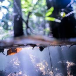 Benoit Fournier 拍摄水的艺术家