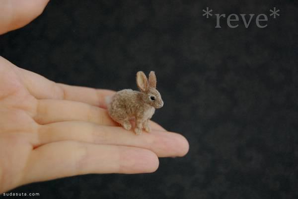 reve (7)
