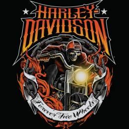 Harley-Davidson 骷髅与纸牌 潮流插画欣赏