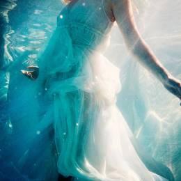 Michael David Adams 唯美浪漫的水下摄影欣赏