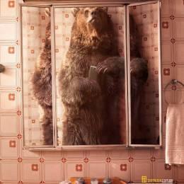假若动物在浴室