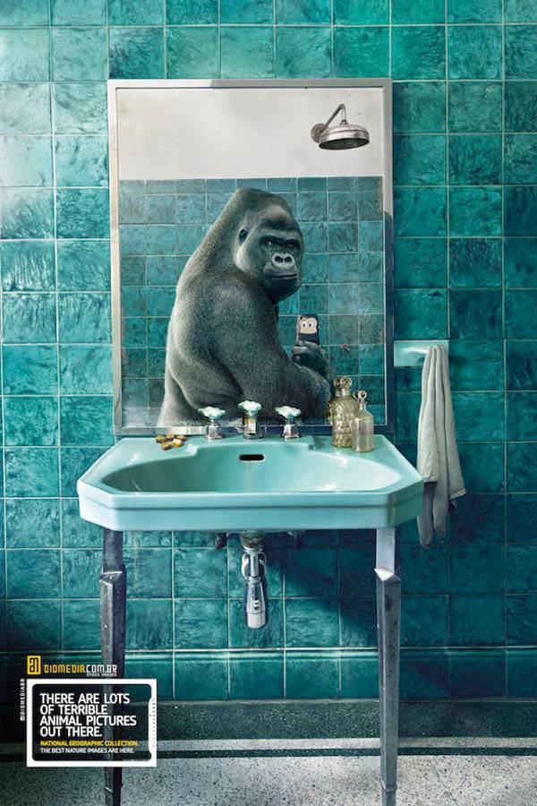 National Geographic (3)