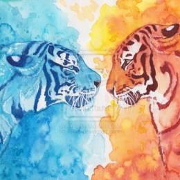 Amanda Klammer 水彩动物手绘作品欣赏