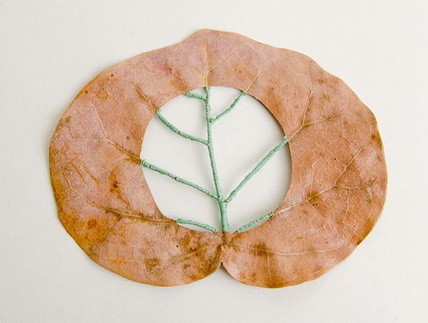 Hillary Fayle 创意生活 叶子的艺术