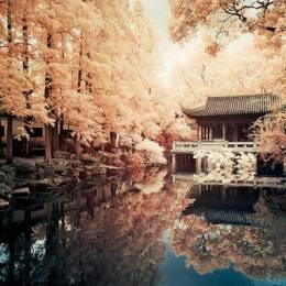 Yiu 城市与风光摄影欣赏
