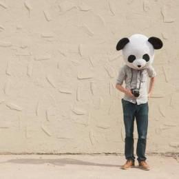 Cody Bratt 熊猫私房照 创意摄影欣赏