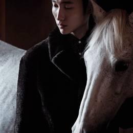 MATTHIEU BELIN 时尚摄影欣赏《Horse year》