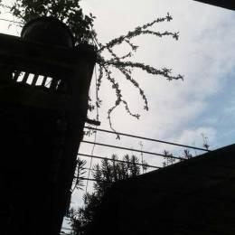 城市摄影《天空的形状》