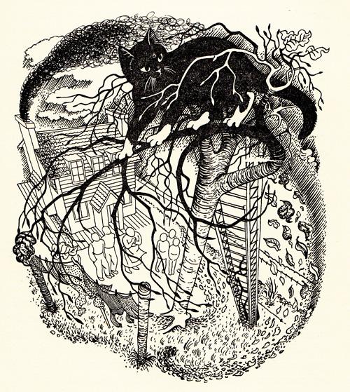 Brain Pickings 猫狗大比拼 书籍插画欣赏