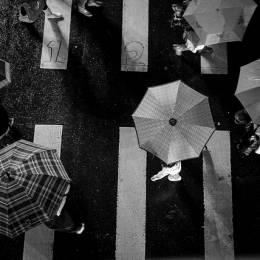 穿过繁华的城市街道 主题摄影欣赏