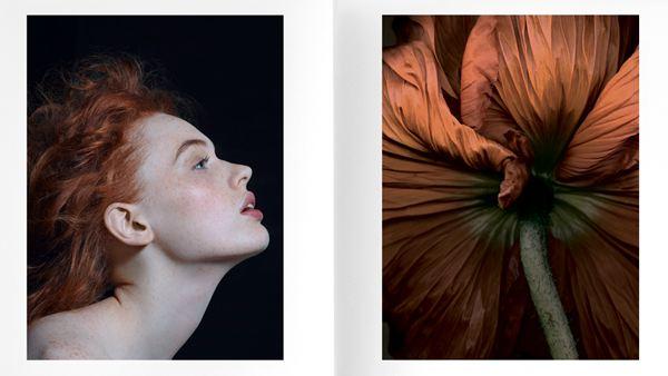 Bruno Fabbris 摄影作品欣赏