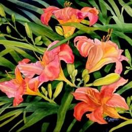 Krzysztof Kowalski 自然花卉作品欣赏