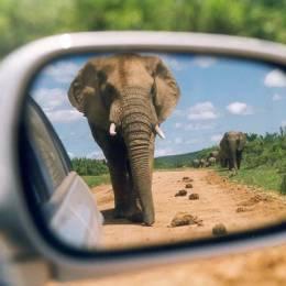 镜子和摄影师 创意摄影欣赏