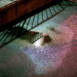 Dale Rothenberg 生活摄影欣赏