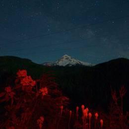 Field Guide 漫天繁星 自然摄影欣赏