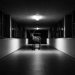 Jason Mc Groarty 黑白摄影作品欣赏