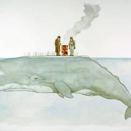 Paul Morstad 鲸鱼的故事